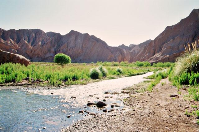 Berge, Wasser und grüne Natur, sind die Grundelemente für die Gesundheitspflege und die Kampfkünste.