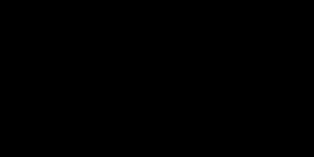 Berliner Skyline schwarz weiß yin yang