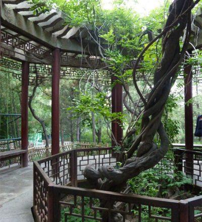 Eine luftige frische Pagode in einem Park in China, die Fengshui symbolisiert und das Spile der Richtungen des Baguazhangs mit einem Baum als Zentrum.