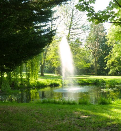 Wasserfontäne in den Göttinger Schillerwiesen mit grünen Bäumen und Wiese, ideal für das Training von Taiji (Tai Chi) und Qigong.