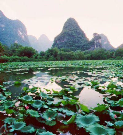 Grüner Lotusblumensee inmitten von blauen Bergen, ein harmonisches Spiel wie beim Qigong, Taijiquan (Tai Chi) und der Mediation.